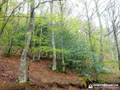 Cañones Ebro, Alto Campoo, Brañosera,Valderredible; agencias de trekking;excursion por madrid